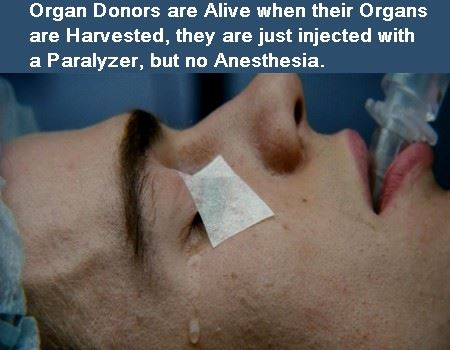 organ-donation-meme